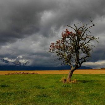 S dramatickou oblohou