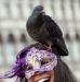 Holub, přítel karnevalu