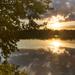 Letní večer na Starém rybníku