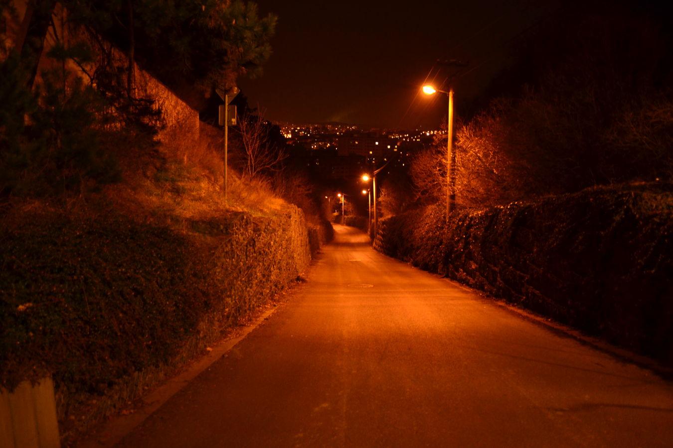 Cesta z hradu.