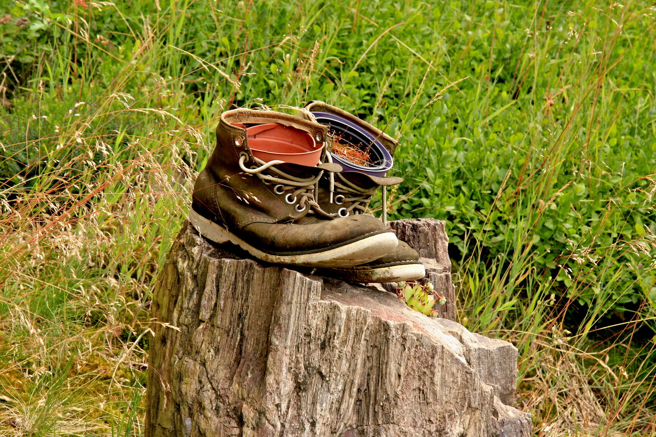 toulavé boty