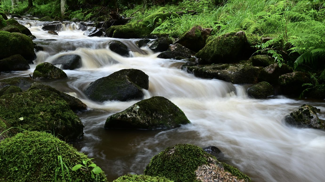 Lobezský potok II