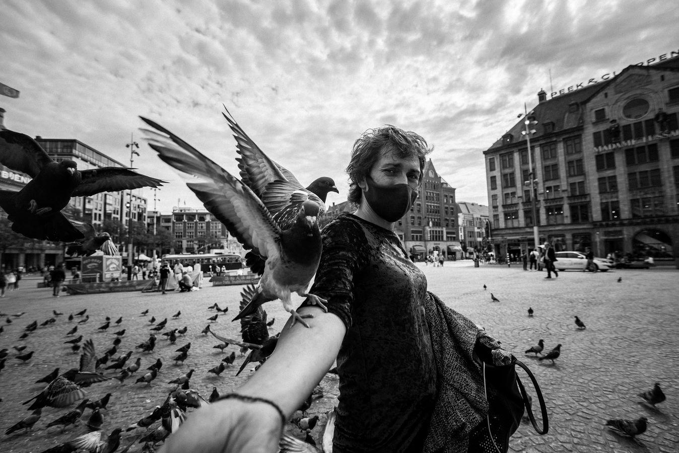 holubí žena
