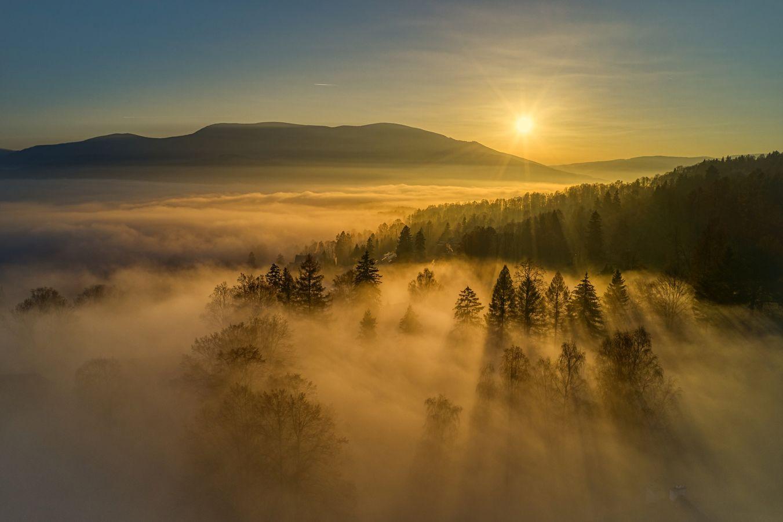 Zlatá mlha