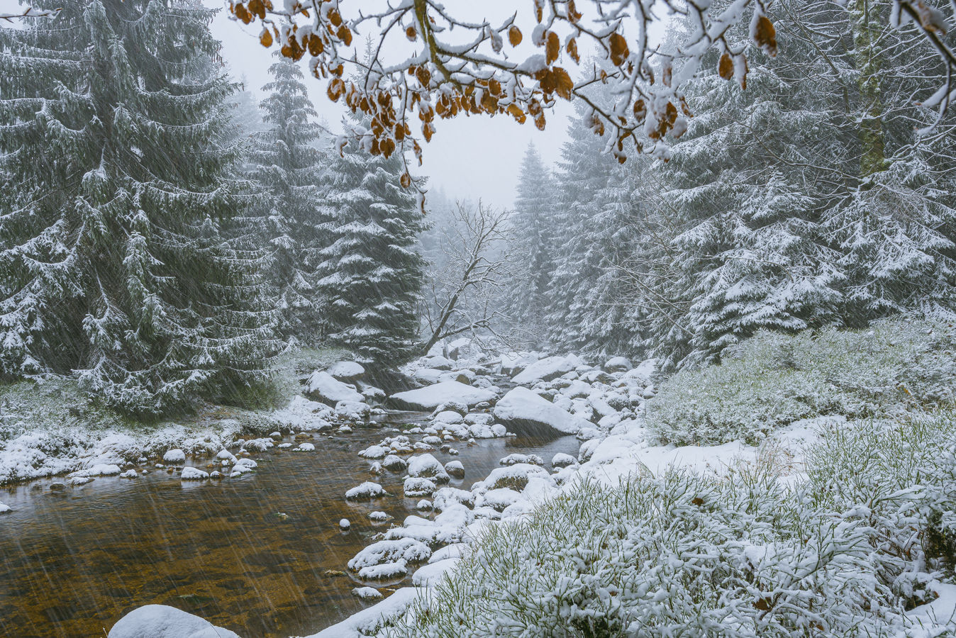Zima v Jizerkách