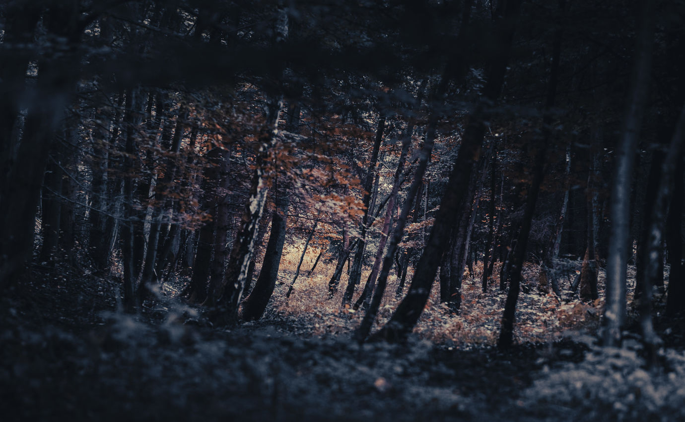 Podzimní deprese
