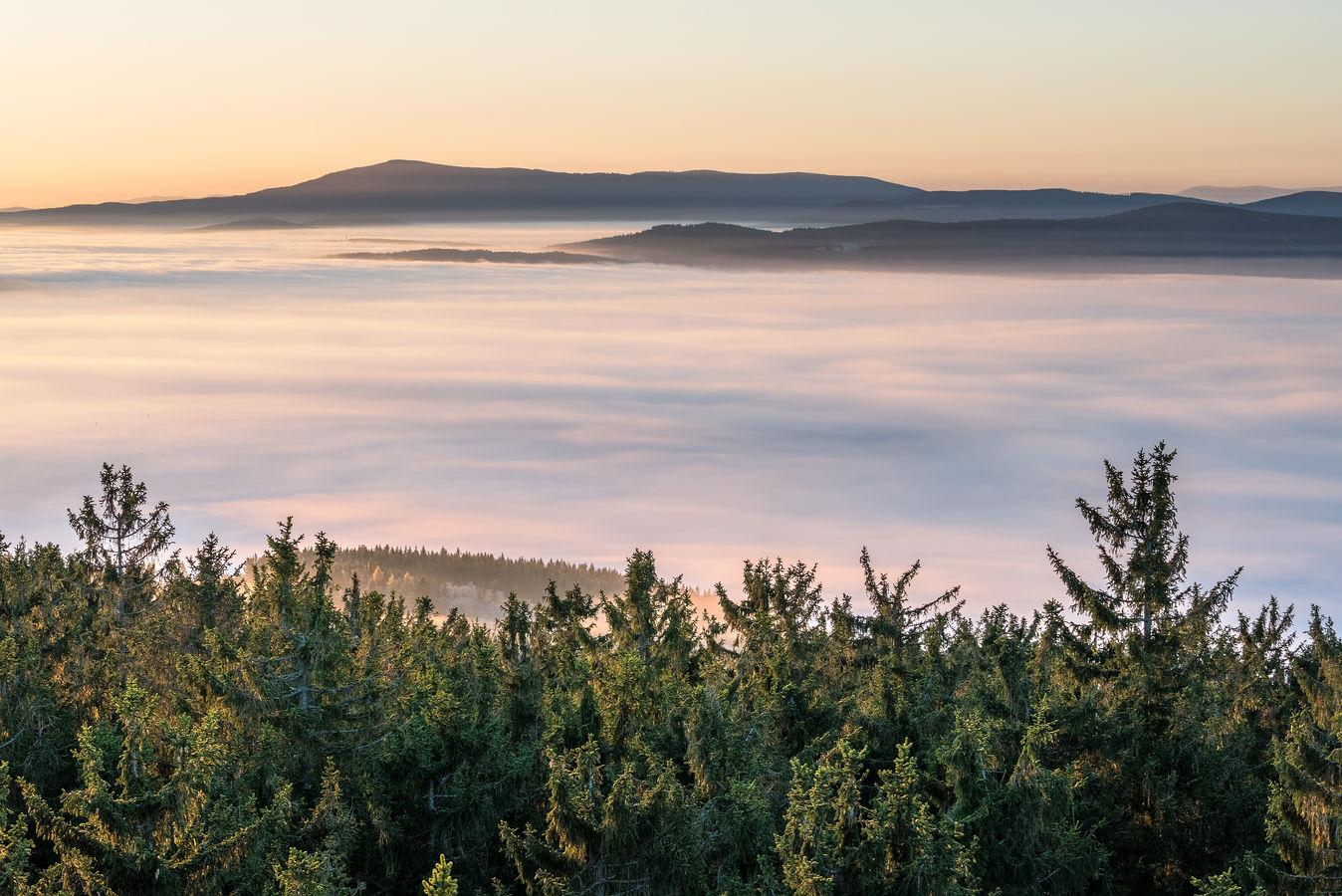 Šumavské mlhy