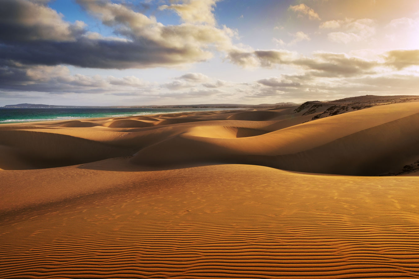 Písečné duny za úsvitu