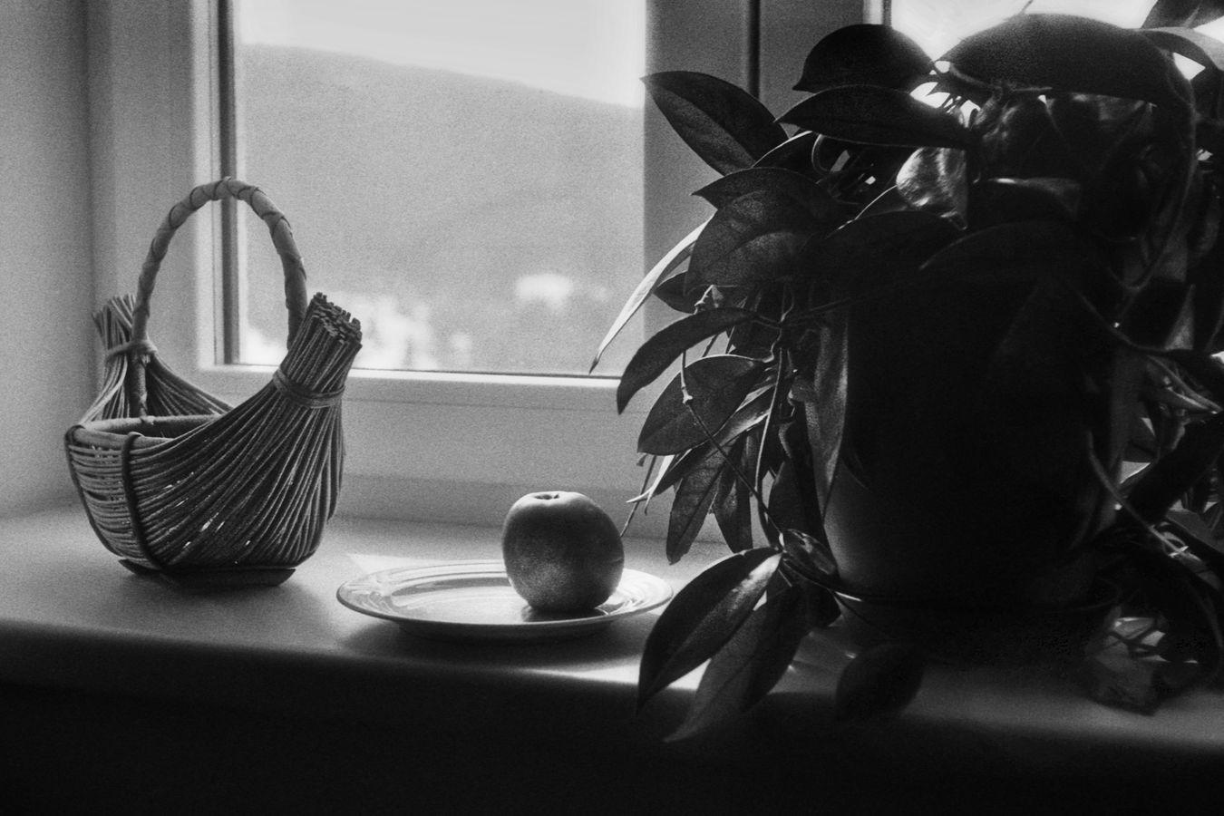 Zátiší s jablkem
