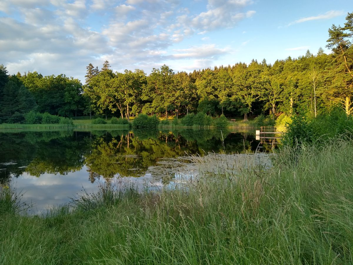 Voda v hávu zeleném