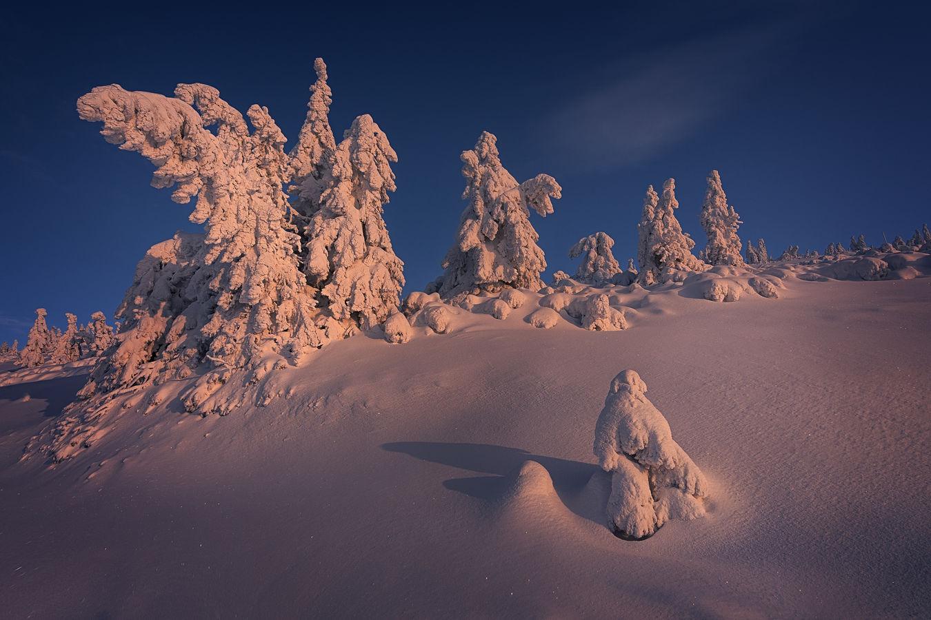 Sněžní panáci