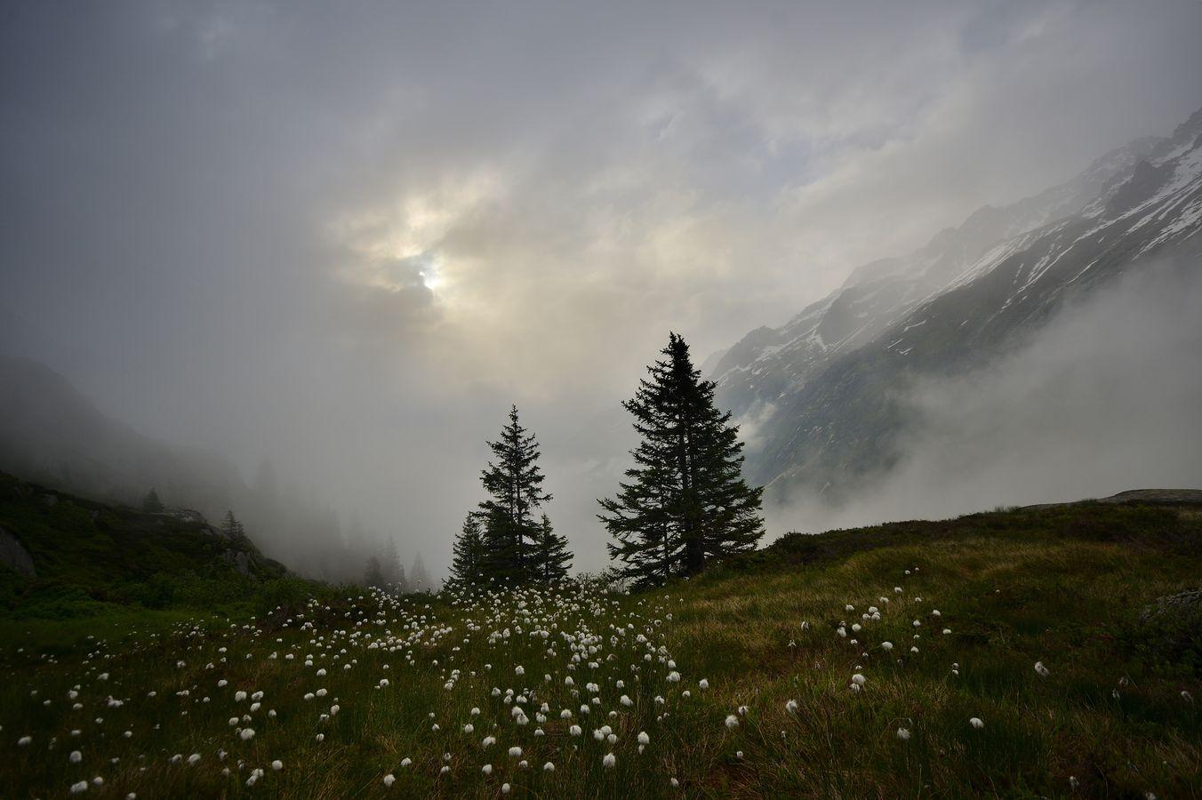 Alpské pošmourno