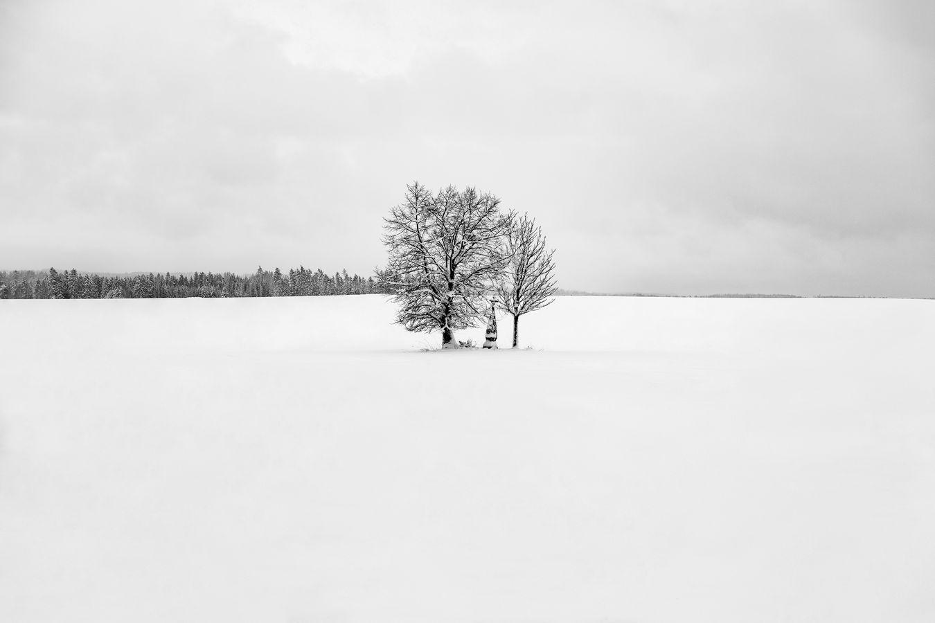 Zimní krajina na vysočině