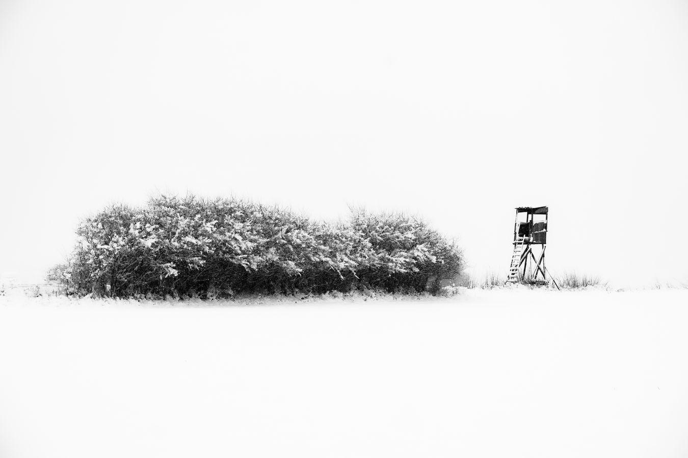 Minimalistická zima