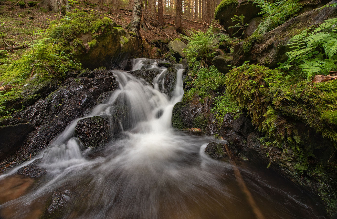 Jaro na šumavské vodě