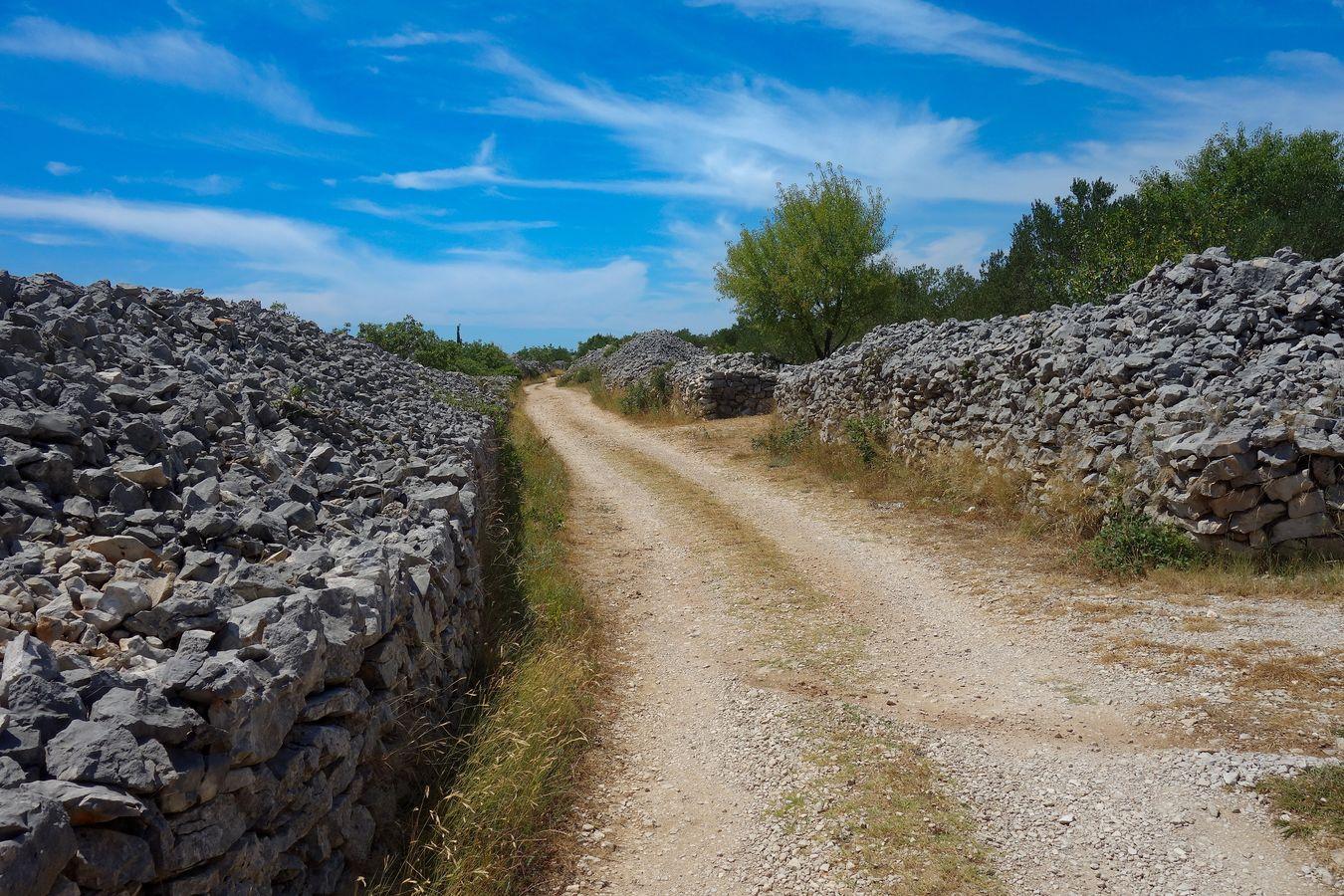Cestou mezi poli na balkánském venkově.