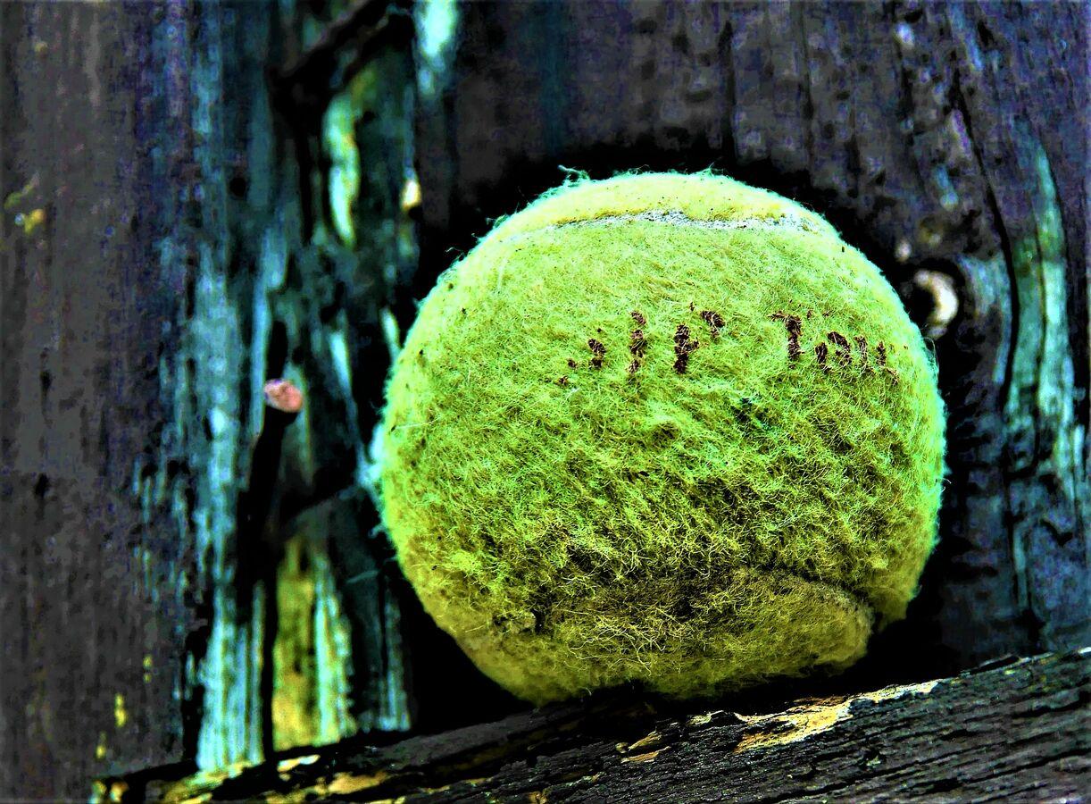 Ztracený tenisák