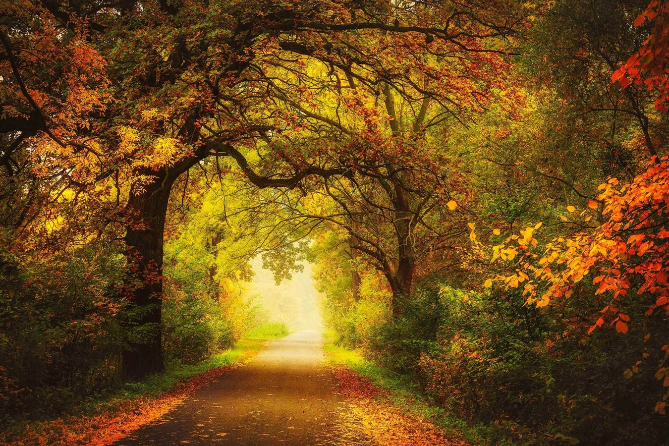 Čarovný podzim