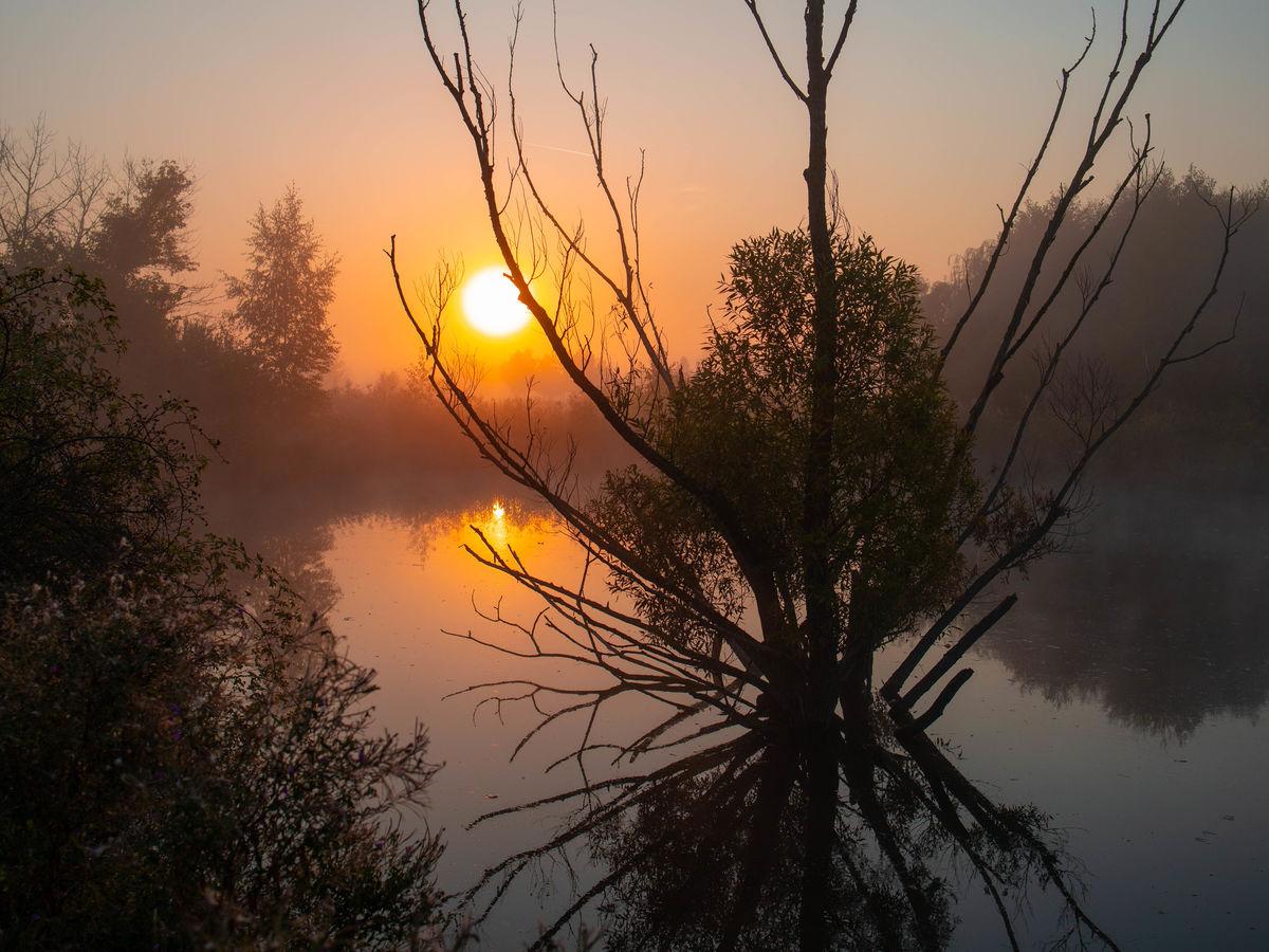 Český rybníček