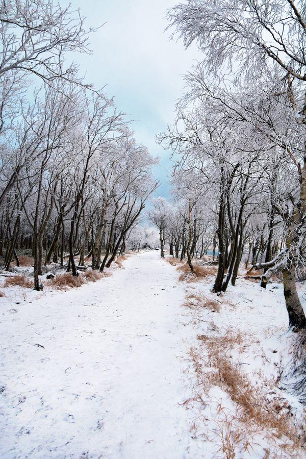 Po ledové cestě