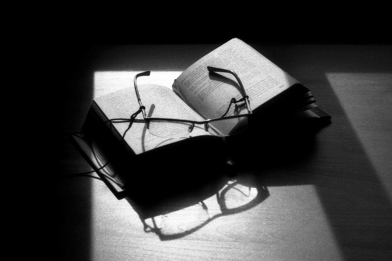 Čtenářská