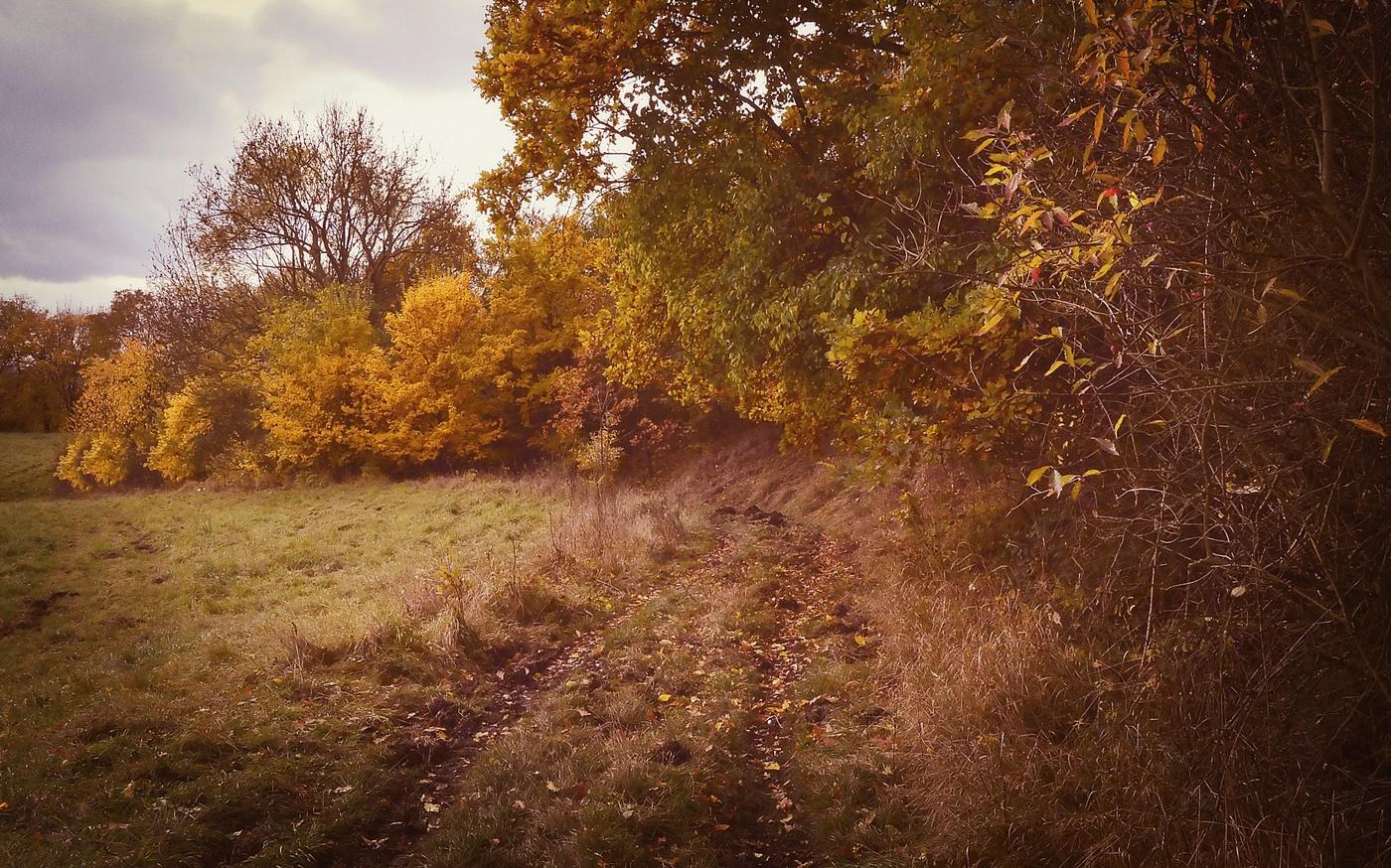 Pastorále podzimu