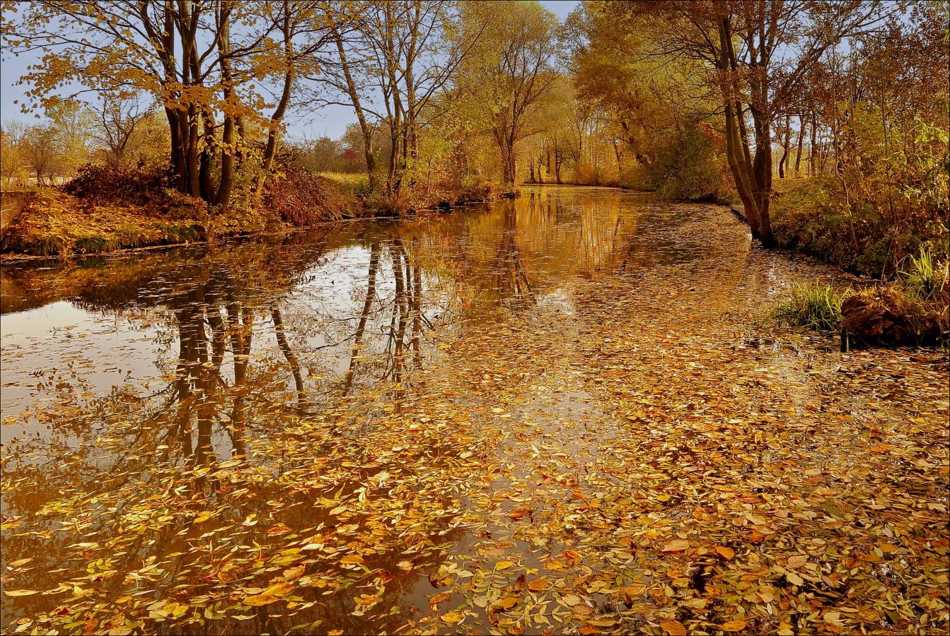 ...na Zlaté řece...