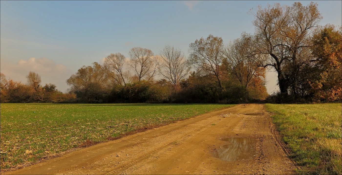 ...podzimní cesta...