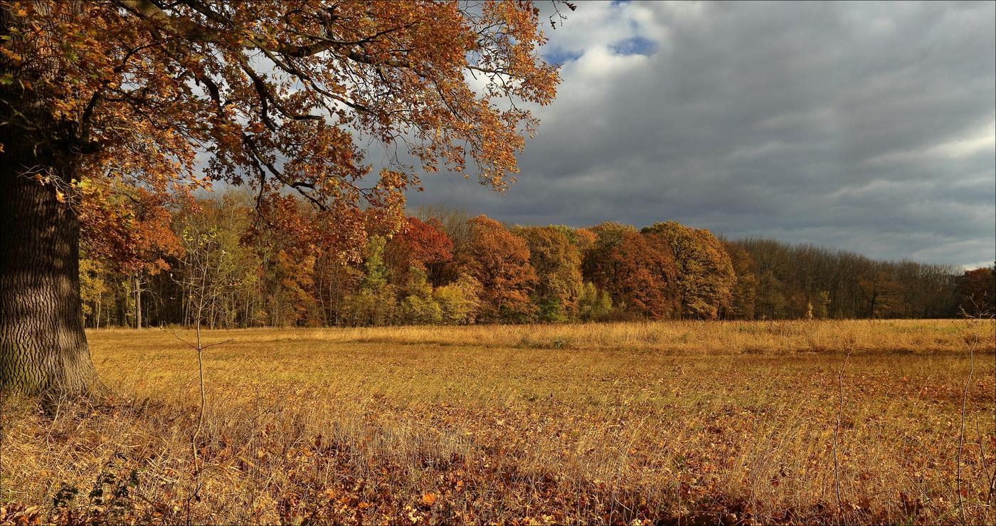 ...podzimní barvy...