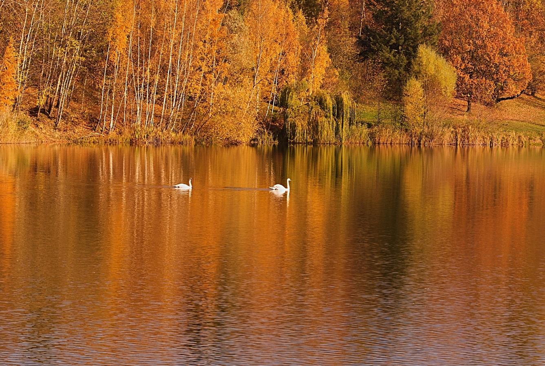 teplý  podzim