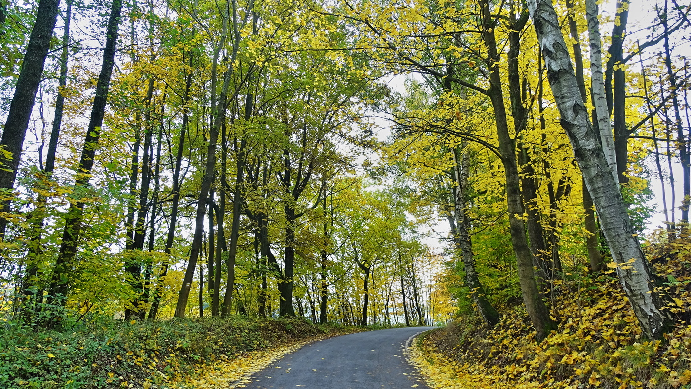 Cestou v barvách podzimu