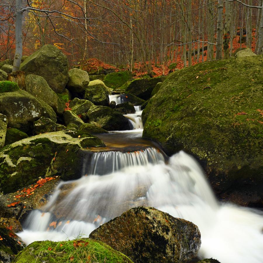 Barevný Černý potok