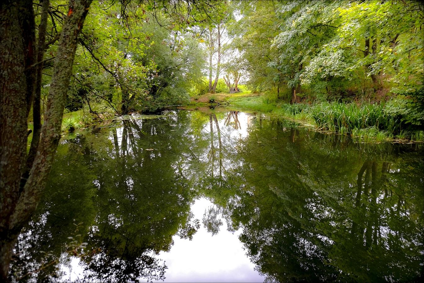 Kapesní rybníček
