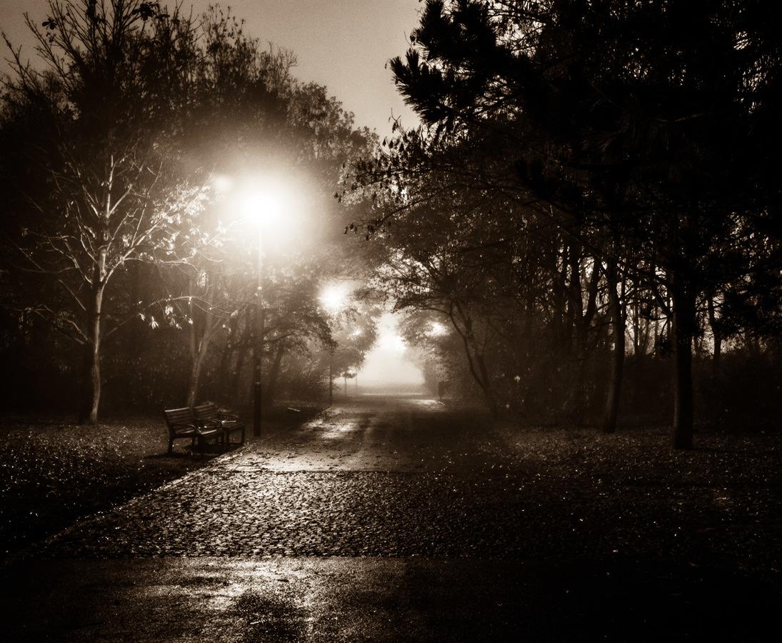 Večerní mlha