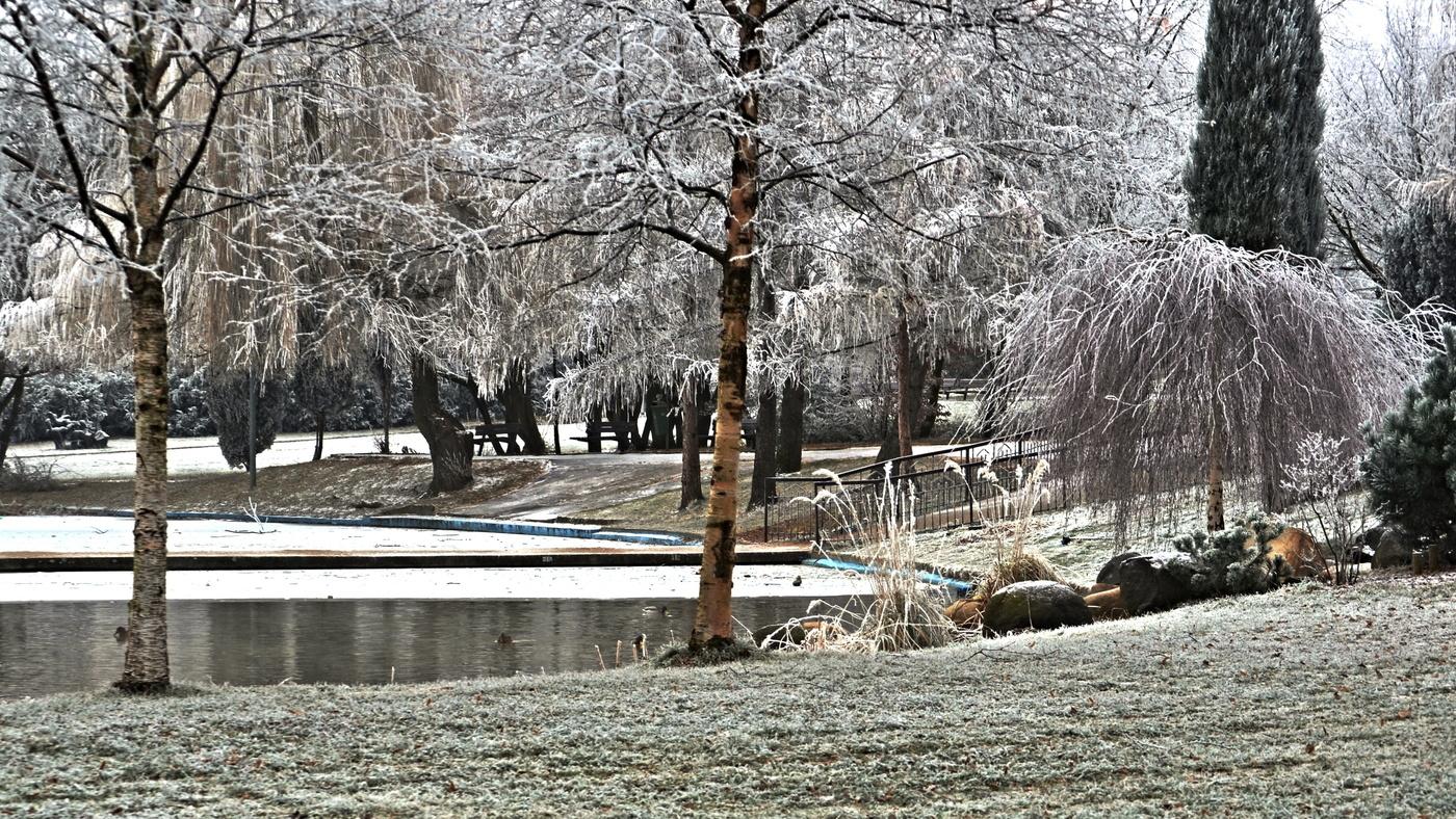 Ojíněno bez sněžení