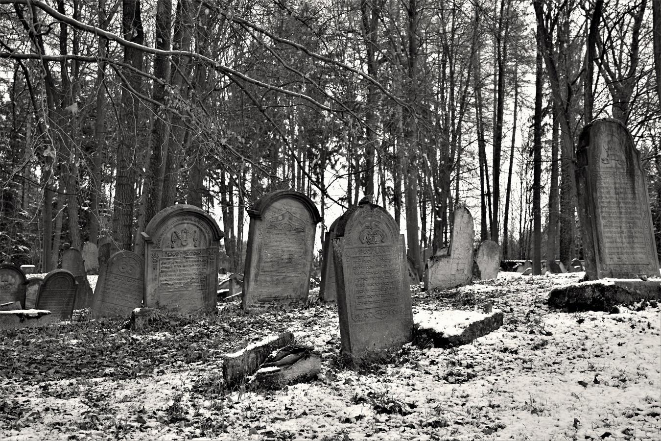 ráno za Luží - Židovský hřbitov ze 17. století