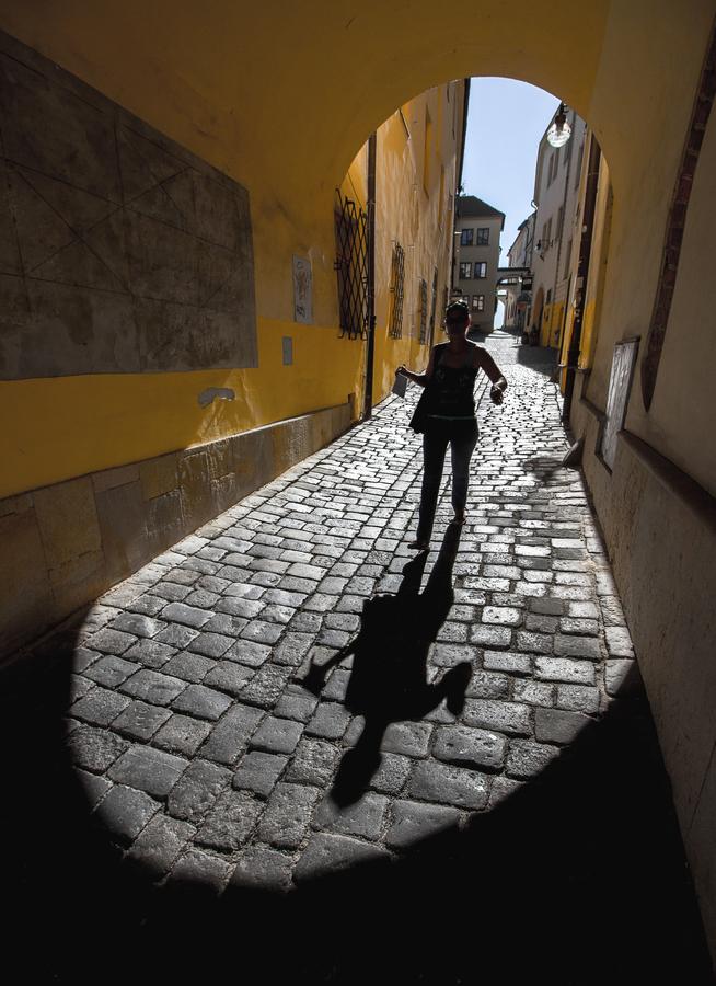 Do stínu