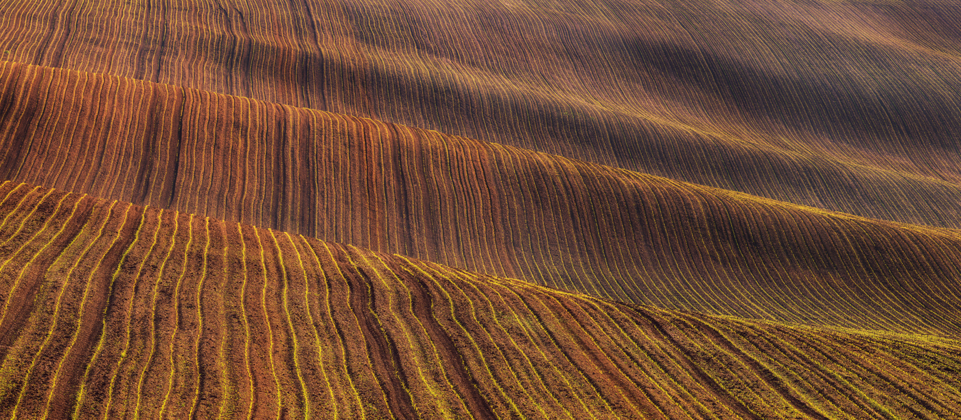 Moravský koberec