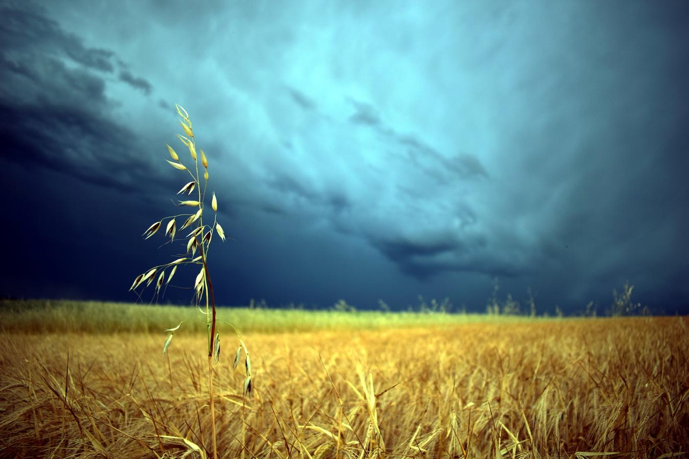 Samotář před bouřkou