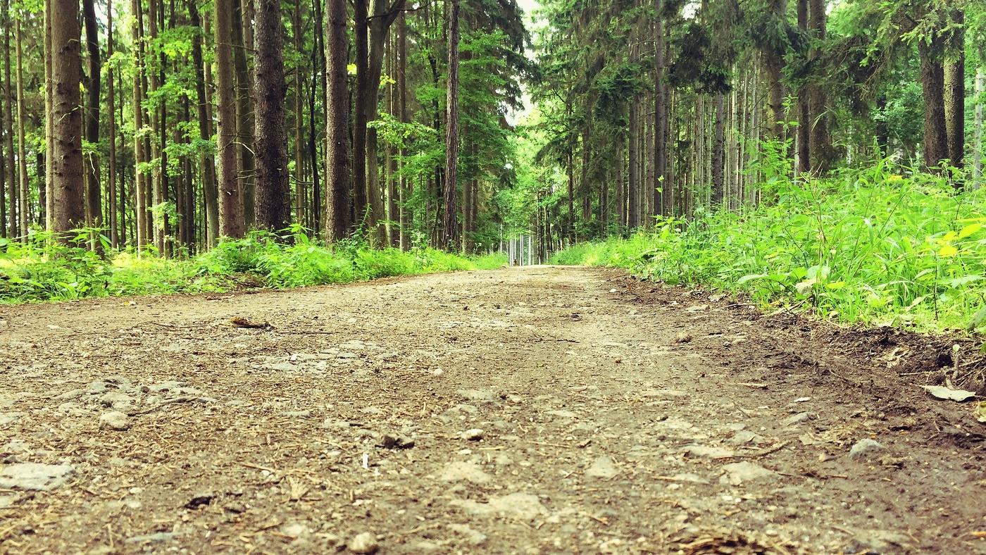 ..Cesta je daleká..