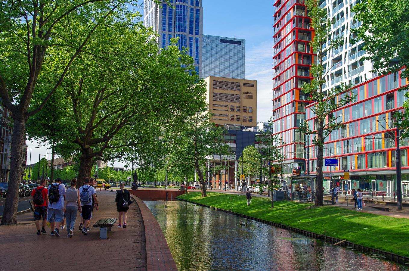 Rotterdam trip