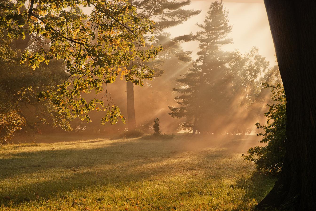 Nebeské ranní světlo