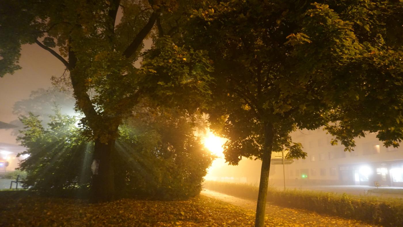 Kouzlo mlhy
