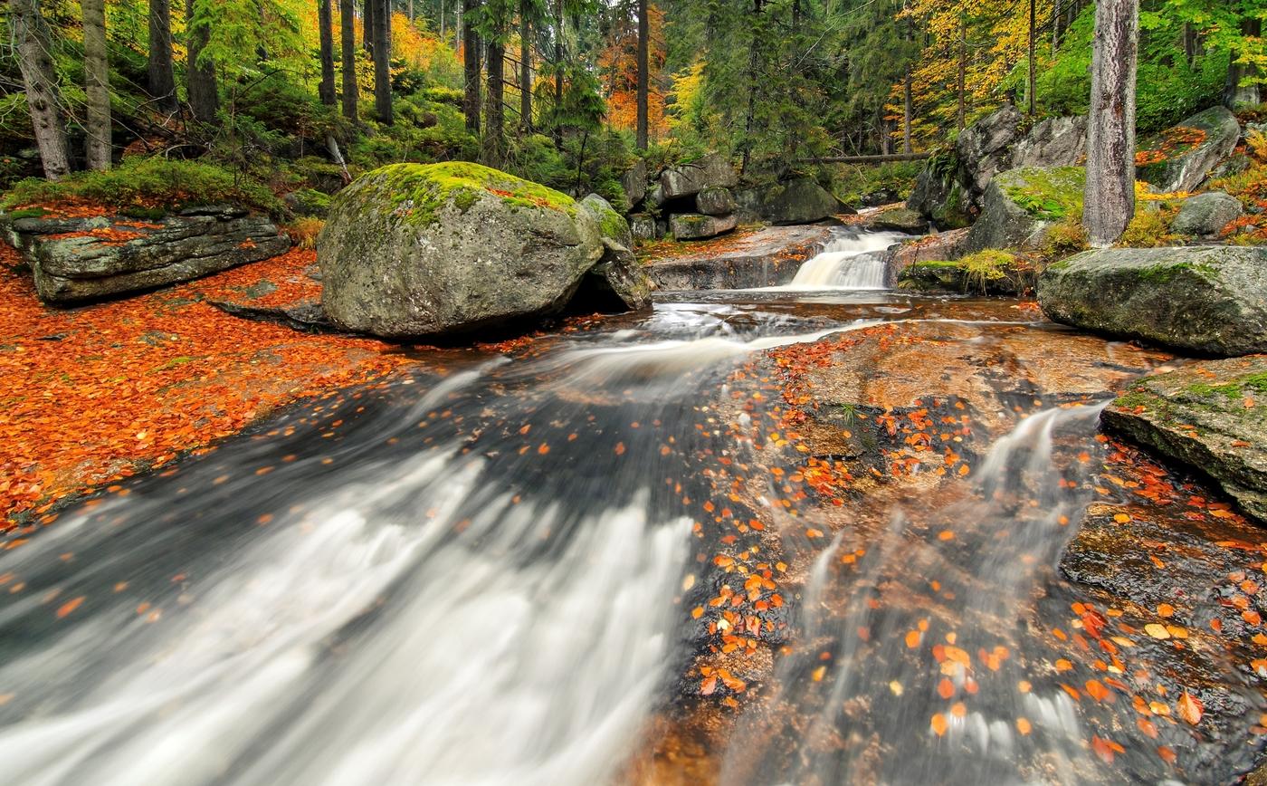 V podzimních barvách