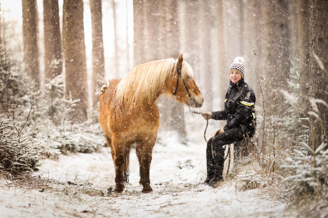 Když v lese sněží