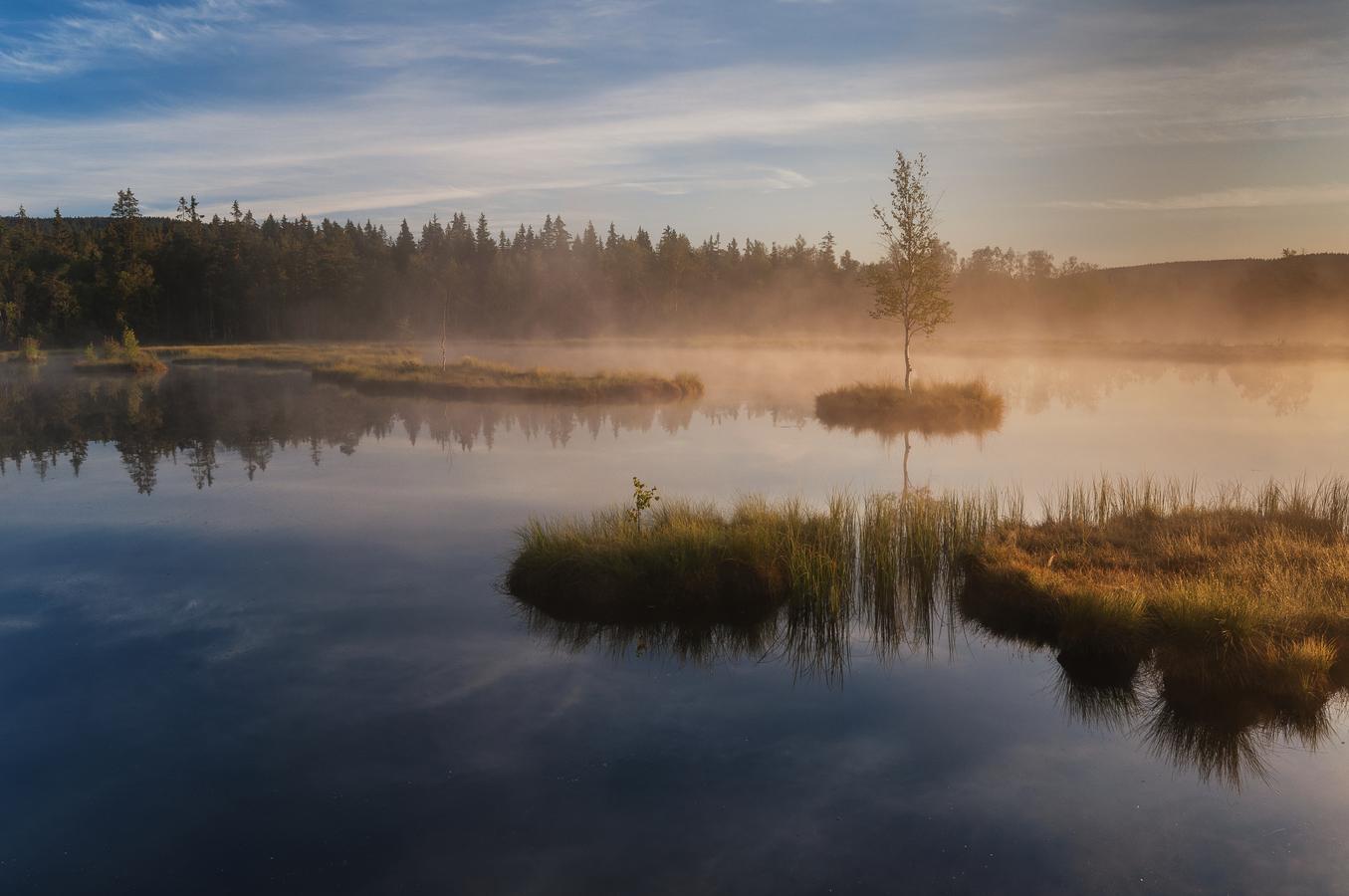 Chalupská slať v ranní mlze