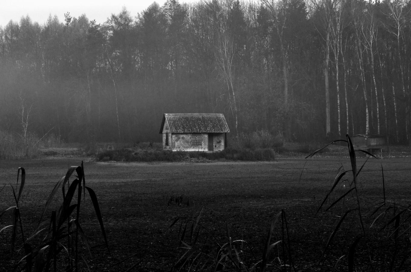 na samotě u lesa.