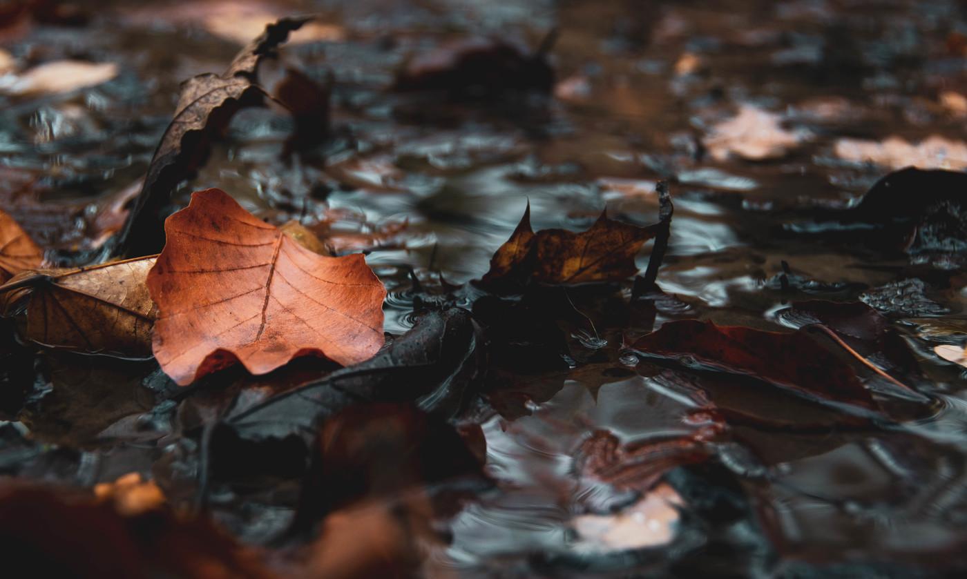 Podzim jde spát