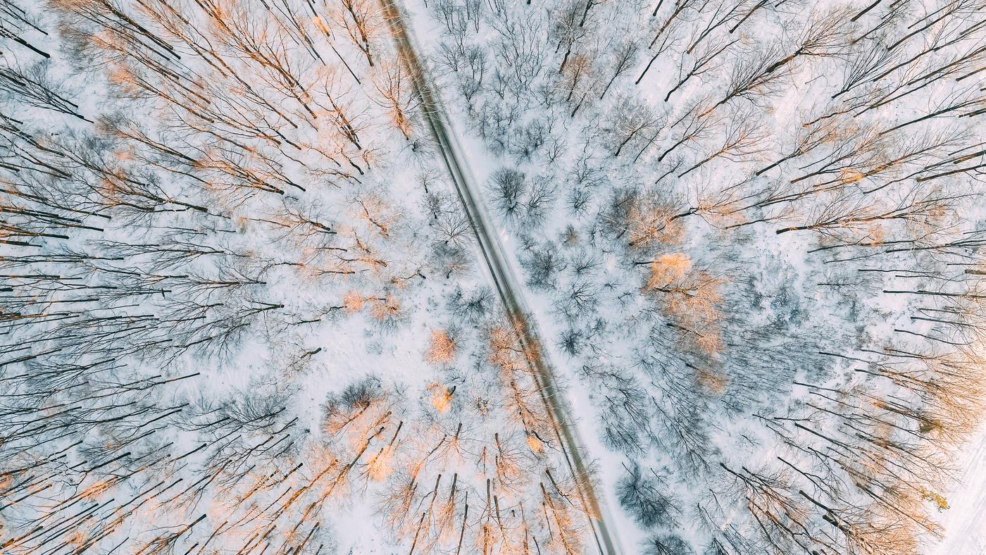 Cesta pod sněhem