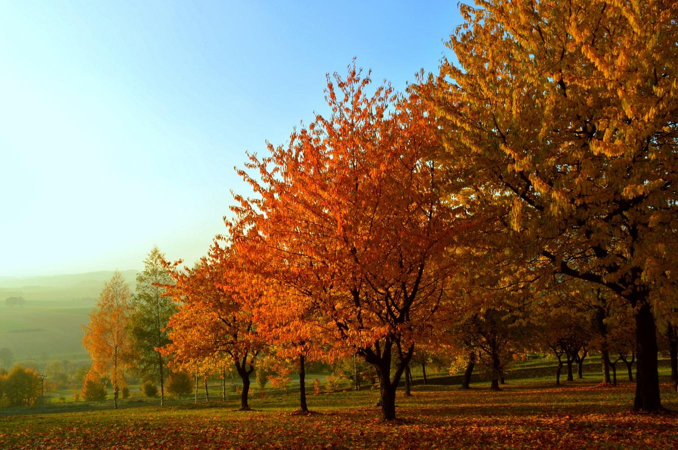 Vzpomínka na teplejší podzimní dny